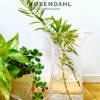 Rosendahl Copenhagen / フィリグラン / フラワーベース